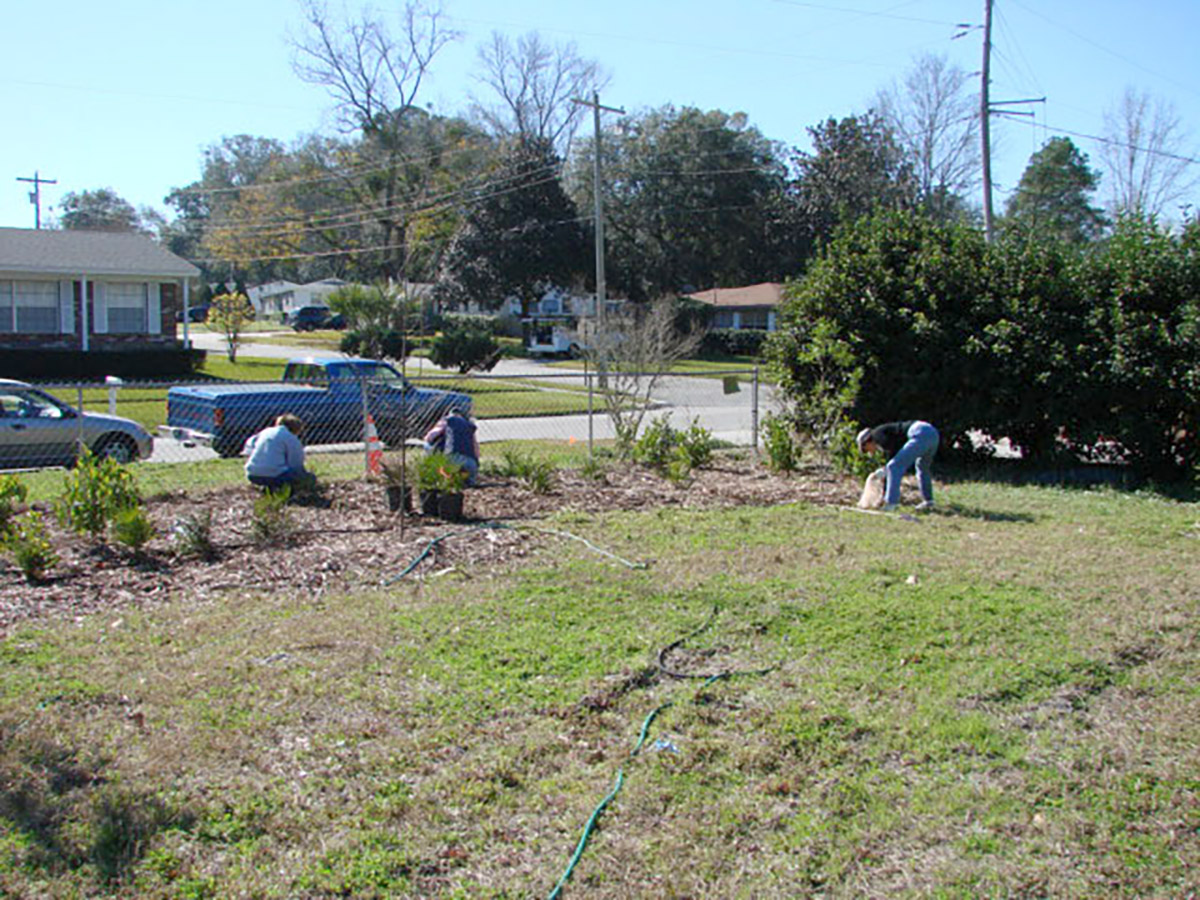 Crosby Native Planting CAntman 200703