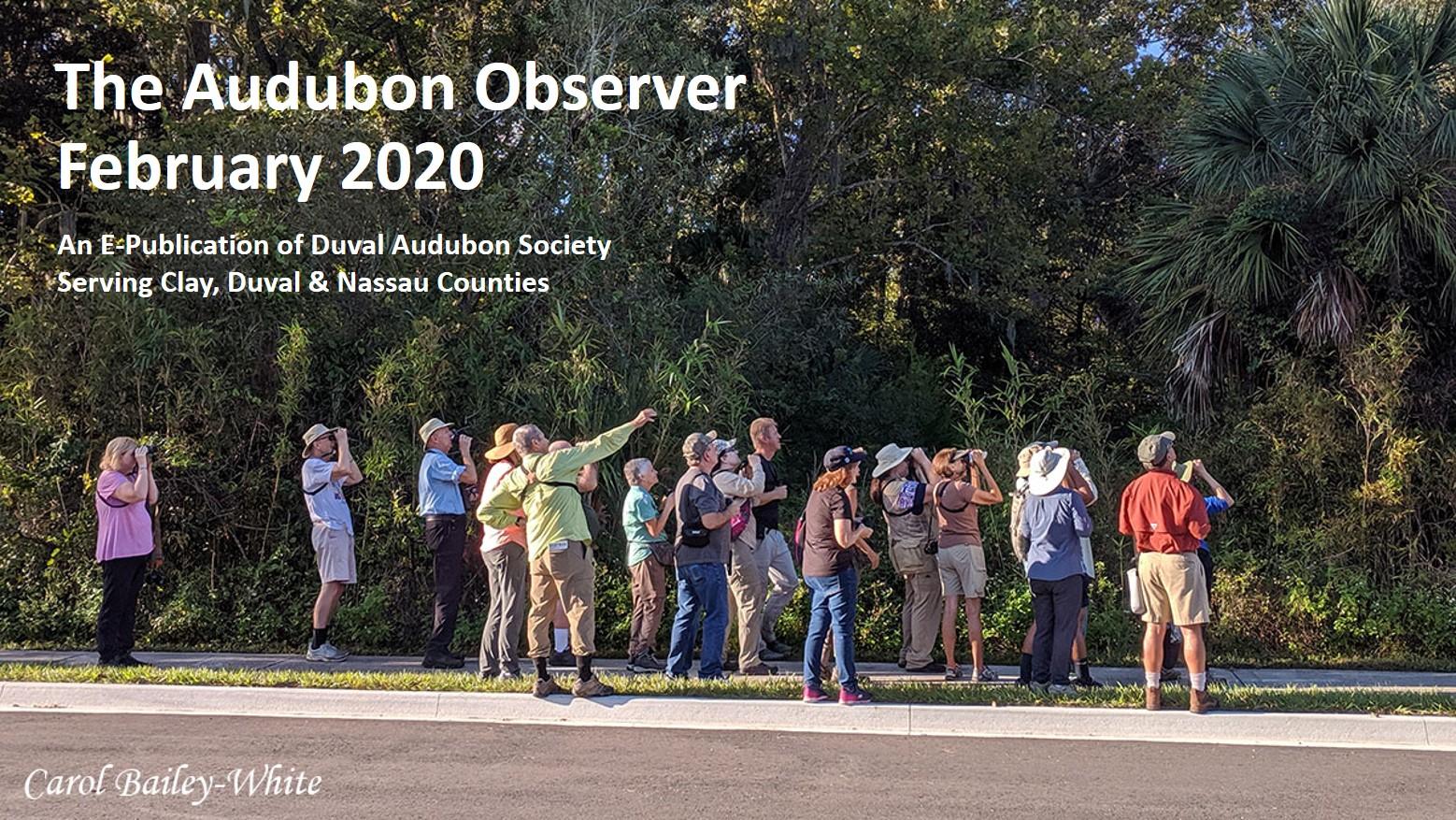 2020 Feb Observer Banner 1
