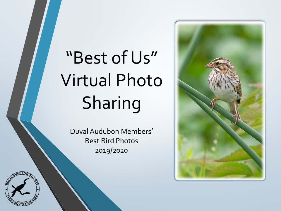 Best of Us Virtual Photo Sharing cover photo