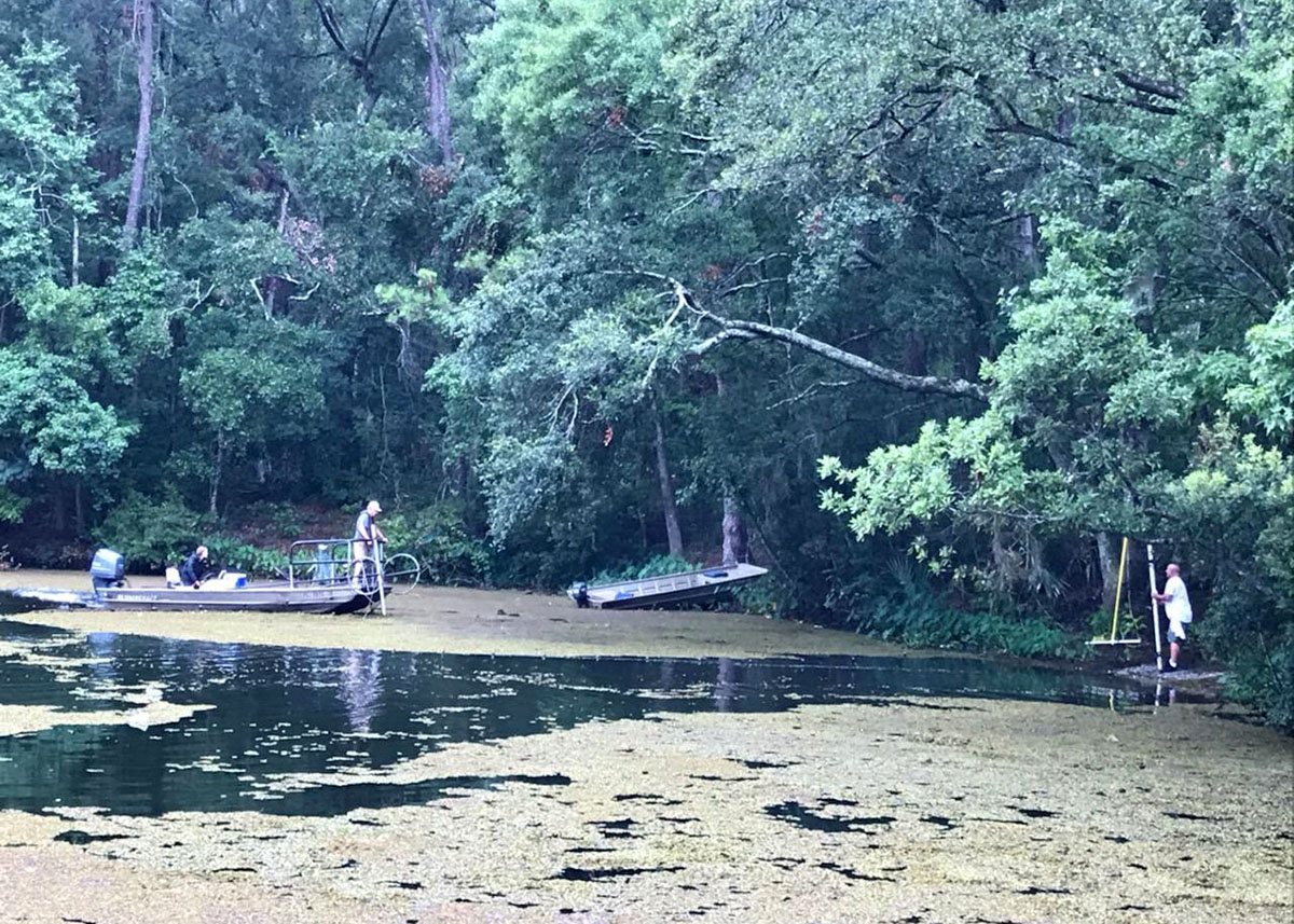 FWC staffers and volunteers work to clear the surface of the north lake