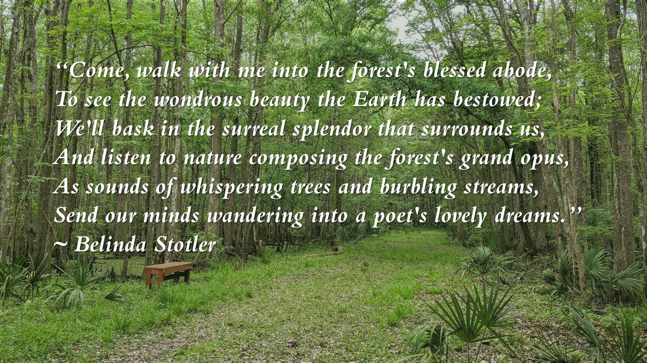Stotler Forests Blessed Abode Excerpt