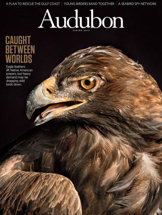 Audubon Magazine Cover Spring 2019